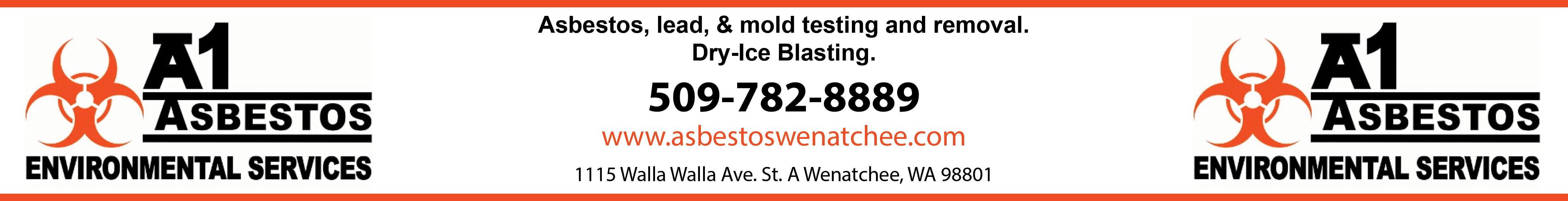 A1 Asbestos LLC